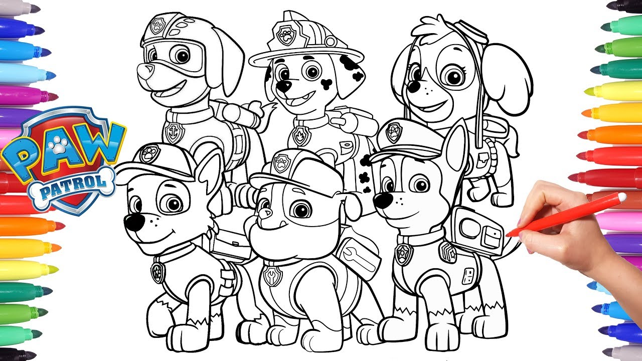 picture about Paw Patrol Printable Pictures titled Paw Patrol Drawing at  Absolutely free for person