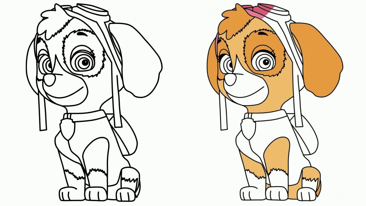 paw patrol drawing at getdrawings  free download