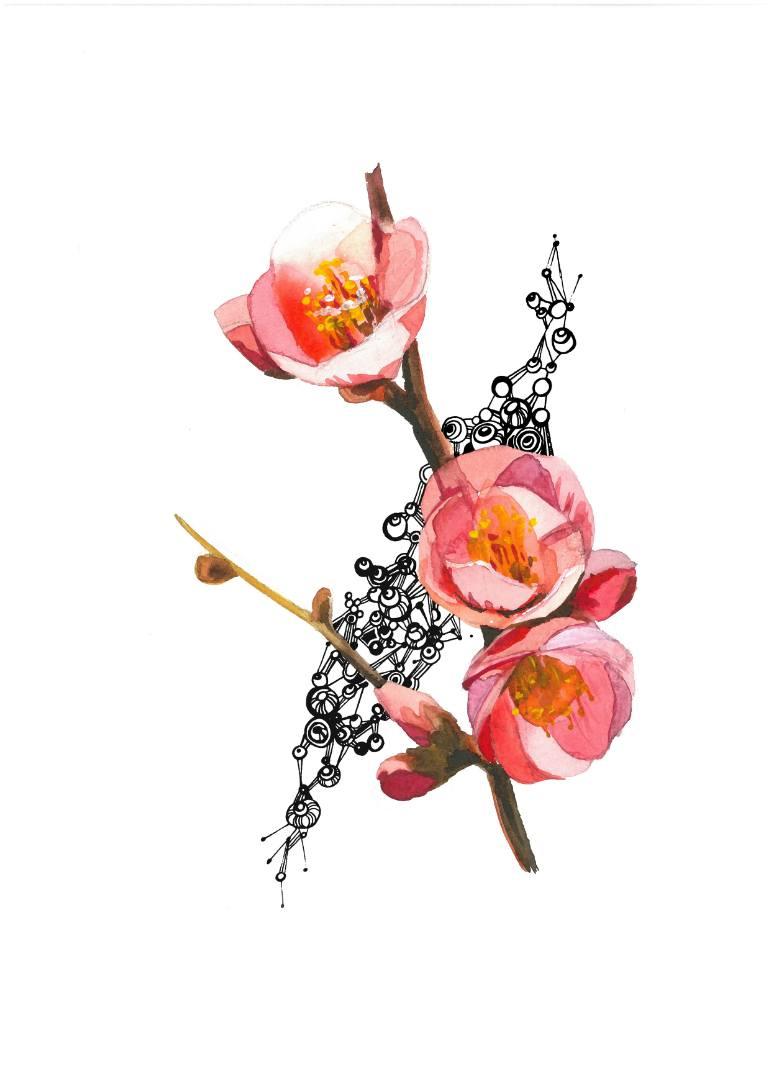 770x1089 Saatchi Art Peach Blossom Drawing By Olga Rostova