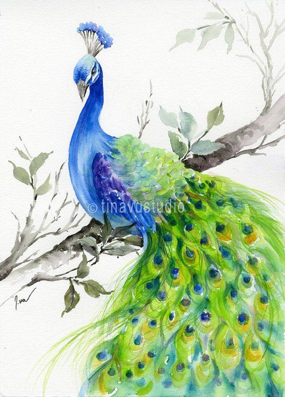 570x794 Peacock Paintings 25 Beautiful Painting Ideas On Pinterest
