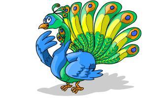 300x200 How To Draw A Cartoon Peacock
