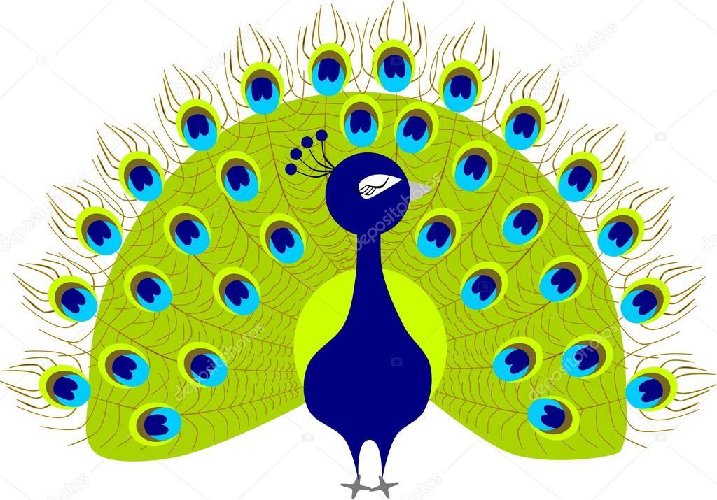 1024x715 Peacock Cartoon Stock Vector Siwabudda