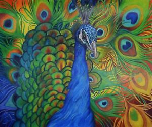 300x250 Sonja Oldenburg Original Colored Pencil Peacock Drawing Peacock