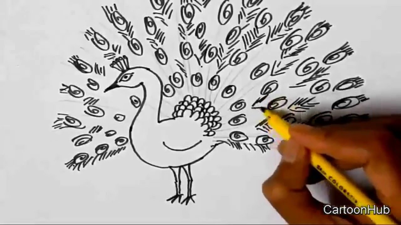 1280x720 How To Draw A Dancing Peacock For Children, Kids, Beginners Lesson