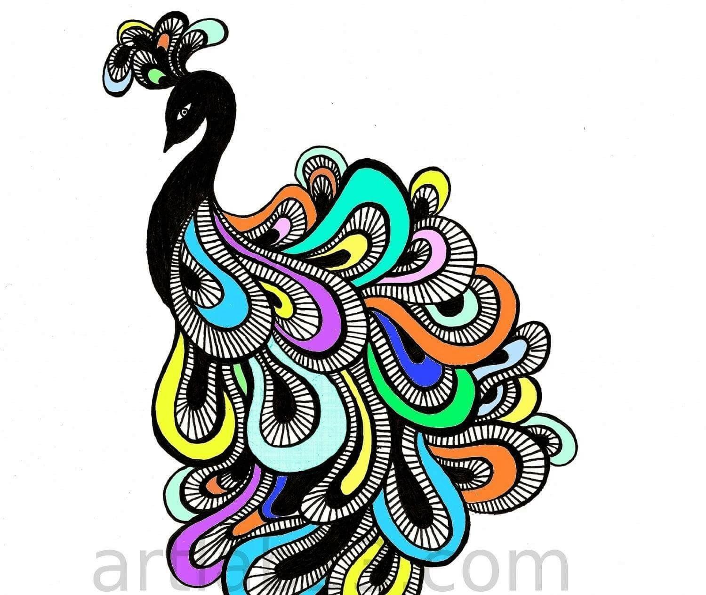 1500x1263 Pin By Meri Keiser On Peacocks Peacock