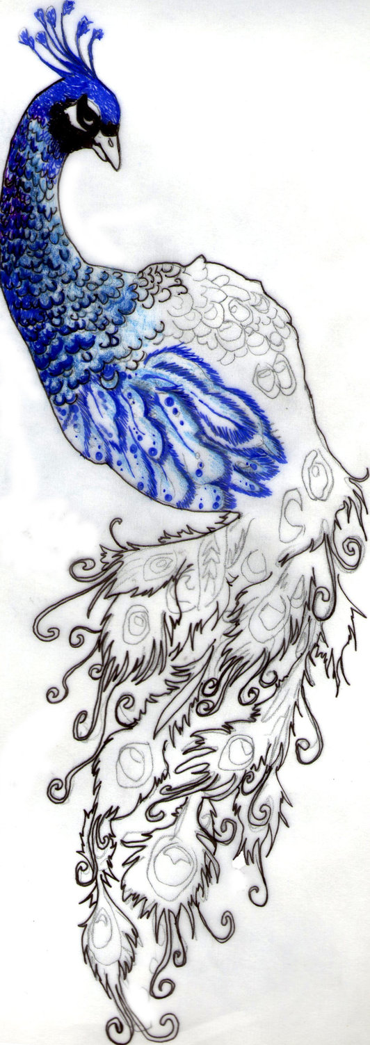 532x1503 Peacock Tattoo By Brandybittersweet