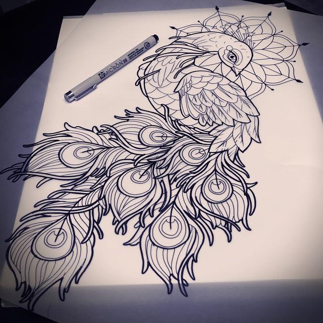 640x640 Peacock Drawing