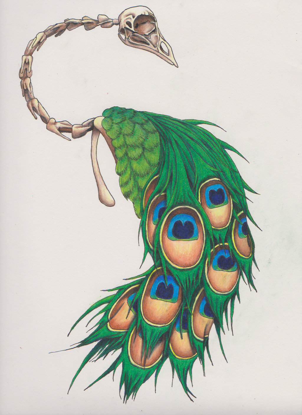 1024x1408 Skeletal Peacock Tattoo (Colorized) By Deezneedsammo