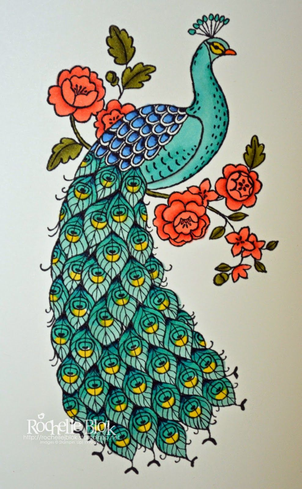 Peacock Images For Drawing at GetDrawings | Free download