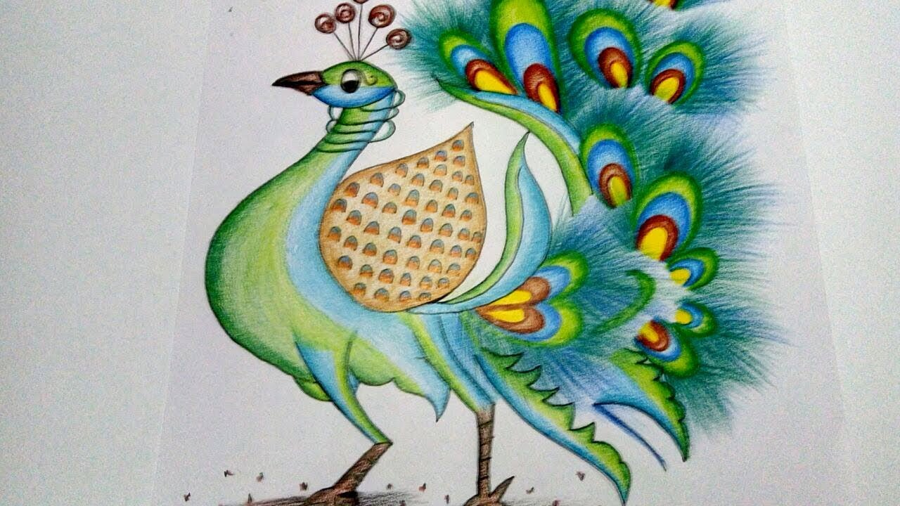 Peafowl Drawing at GetDrawings com | Free for personal use Peafowl