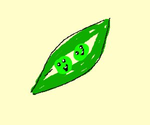 Peapod Drawing at GetDrawings com | Free for personal use