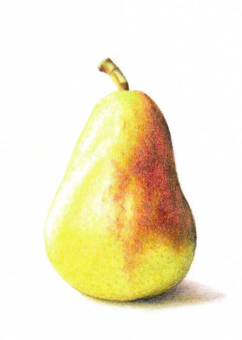 500x700 Bluebird Hill Let's Draw A Pear!