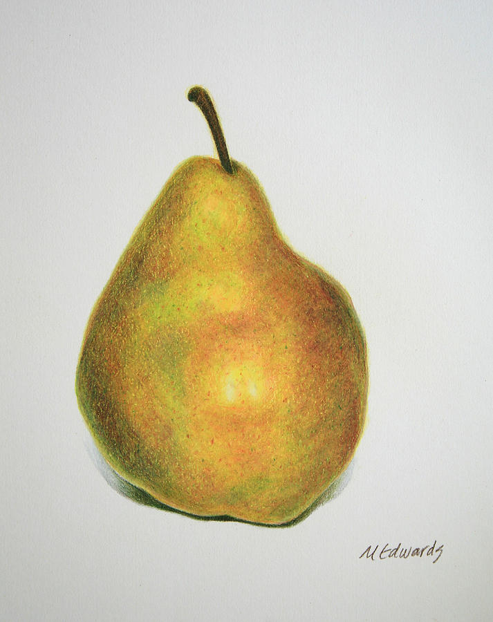 713x900 Pear Practice Drawing By Marna Edwards Flavell