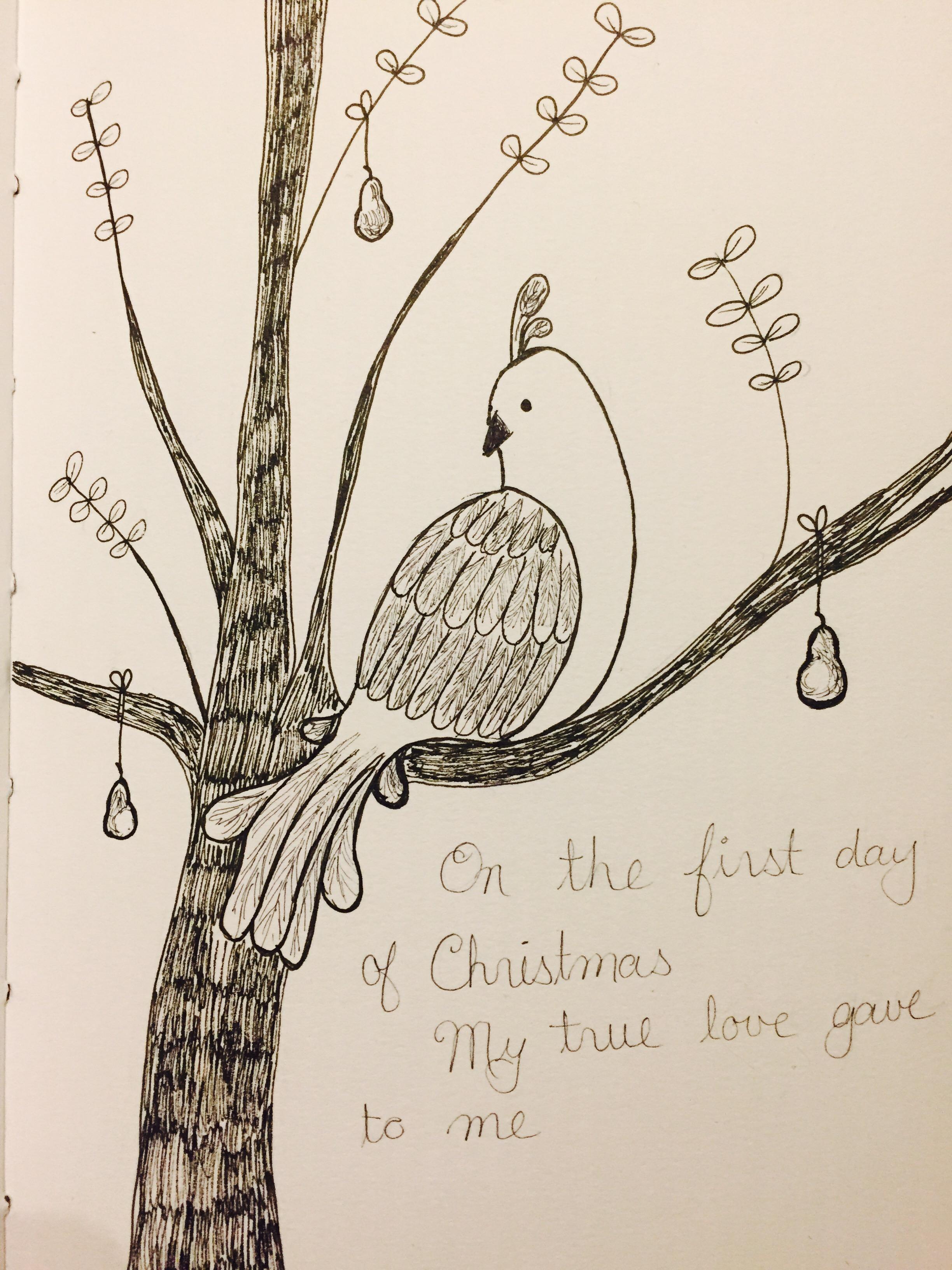 2448x3264 A Partridge In A Pear Tree Jasmin In Edmonton