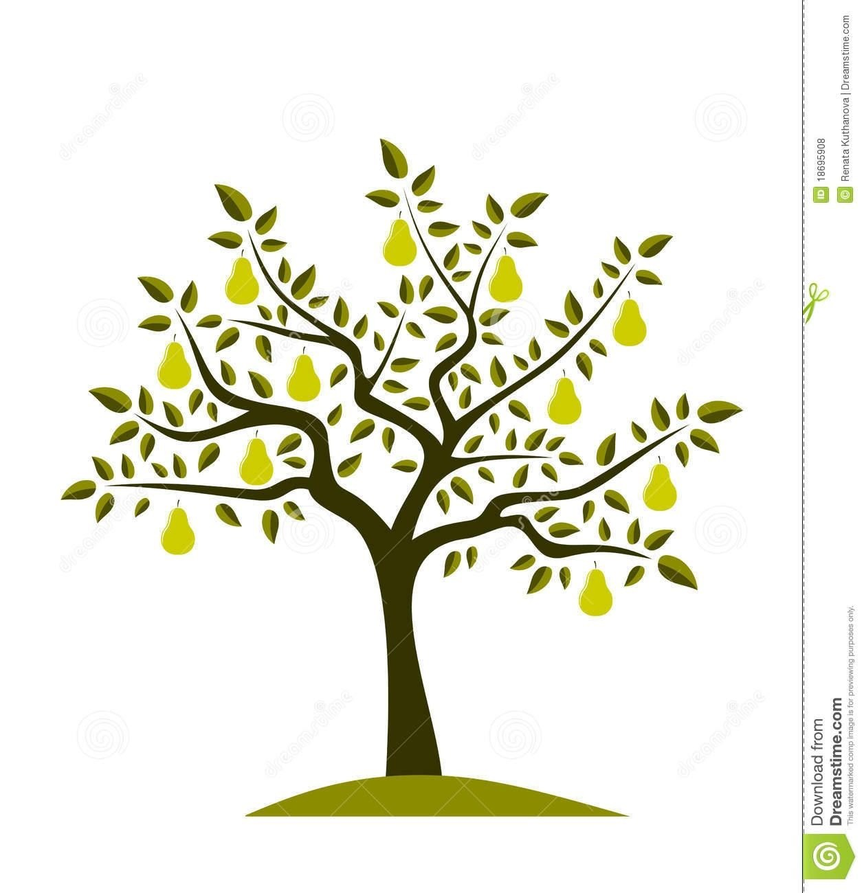 1257x1300 Pear Tree Drawing Simple Living Tree In The World Places