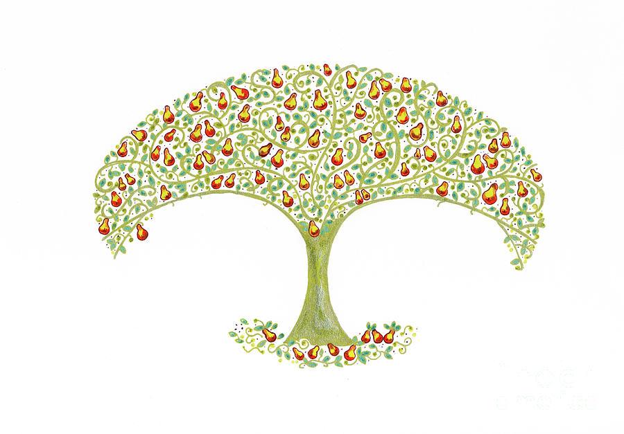 900x627 Pear Tree Drawing By Arti Caz