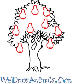 300x350 Pear Tree 05.png