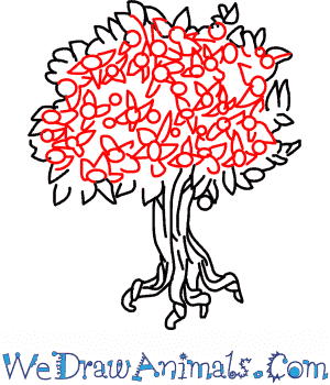 300x350 Pecan Tree 05.png