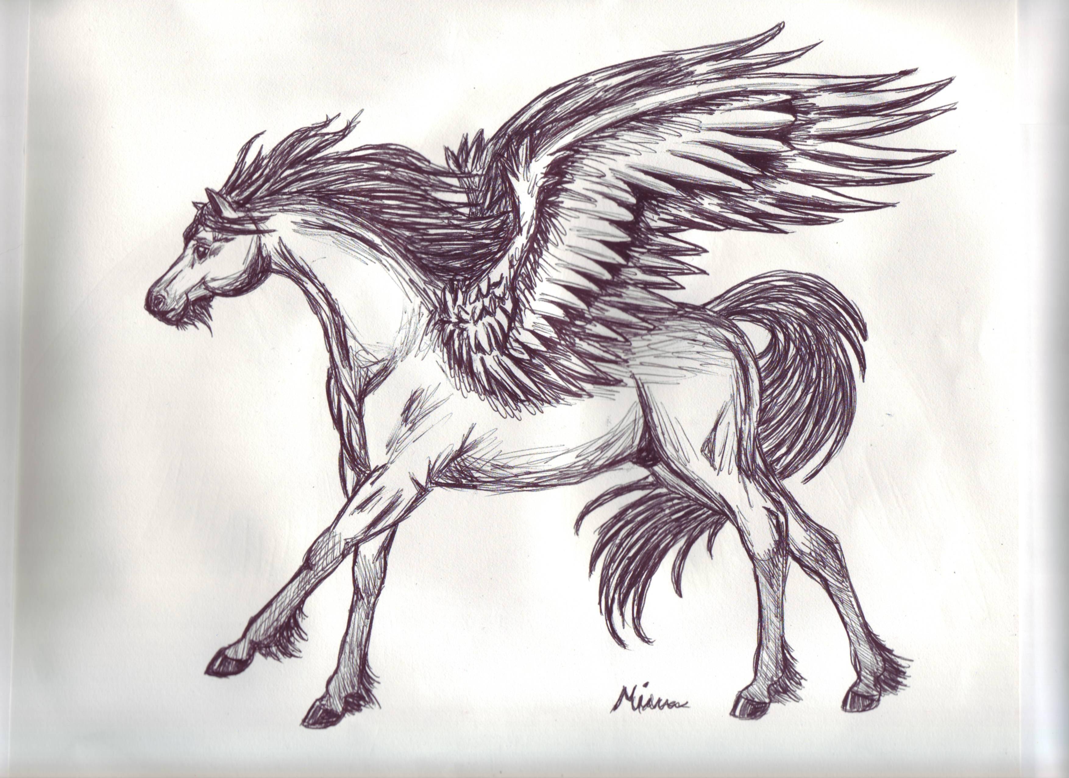 3508x2552 Pegasus Drawingtutorialsinspiration Pegasus