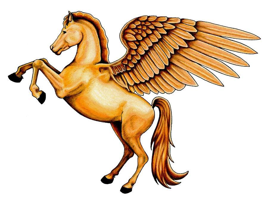 900x685 Pegasus Drawing By Sheryl Unwin