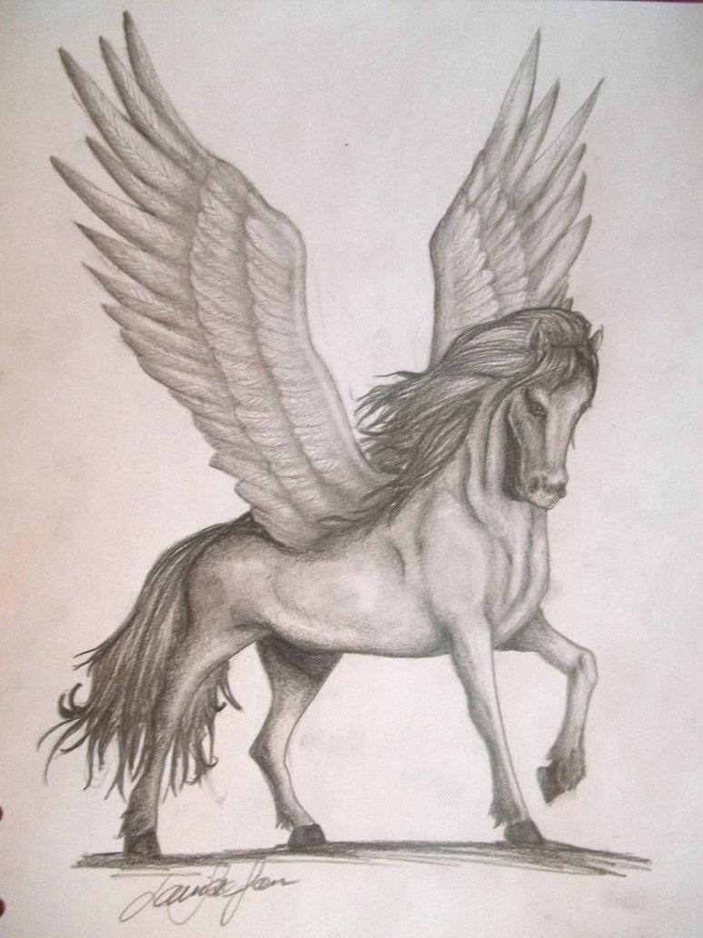 774x1032 Pegasus By Lollopopi