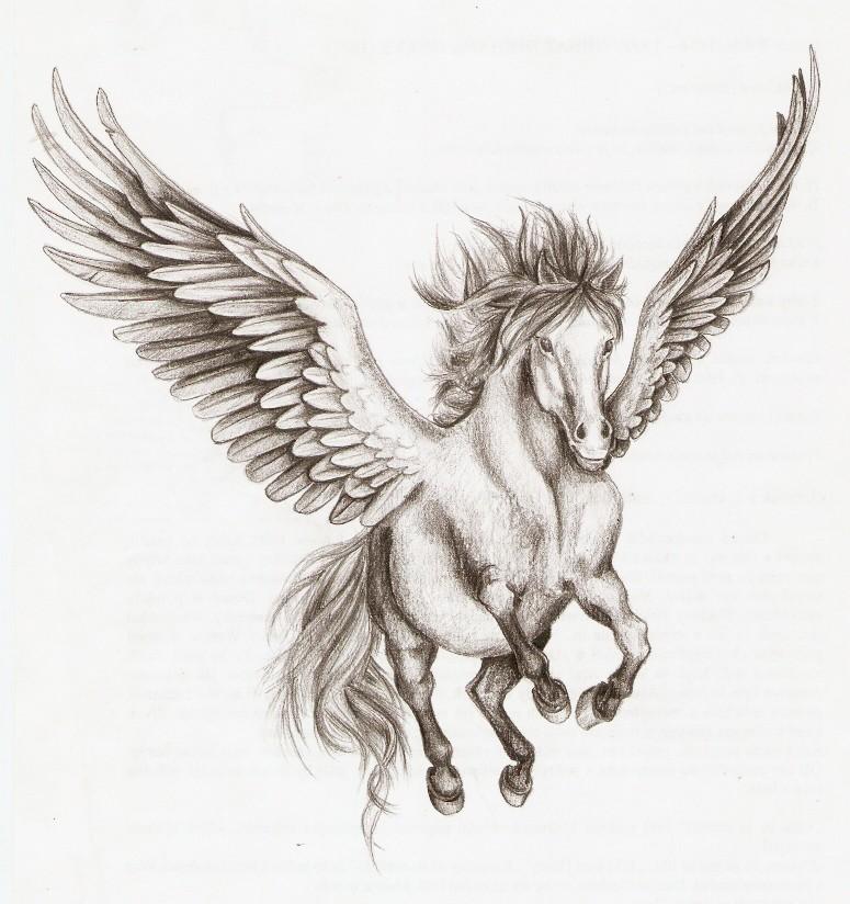 775x824 Pegasus By Nachiii