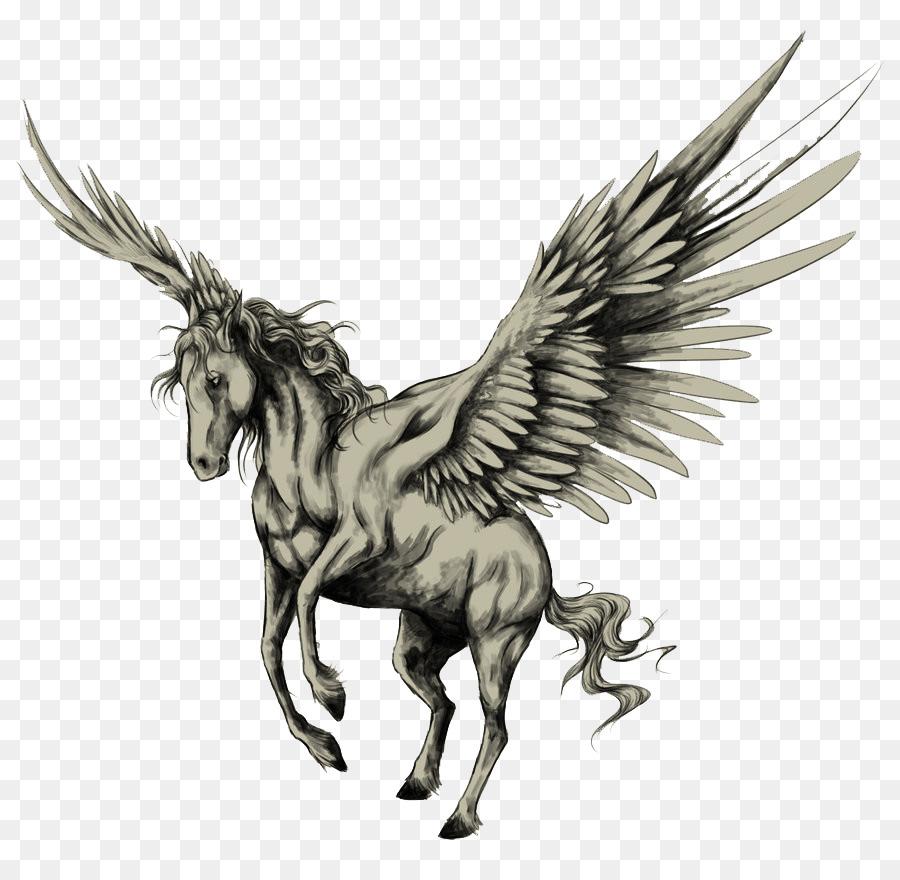 900x880 Tattoo Pegasus Drawing Horse Sketch