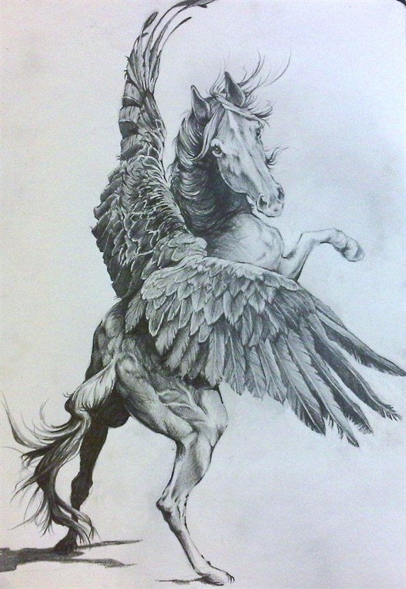 593x860 Fly And Be Free, My Sweet Horse Pegasus By Karina Griffiths