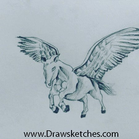 450x450 How To Draw A Pegasus
