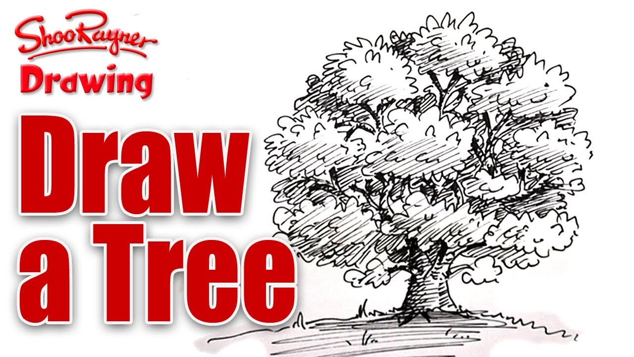 Pen And Ink Tree Drawing at GetDrawings.com | Free for personal use ...