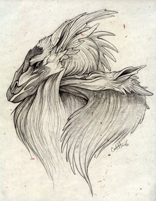 550x708 Pencil Dragons By Caramitten
