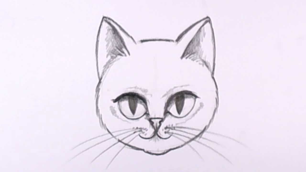 1280x720 How to Draw a Cat Face in Pencil