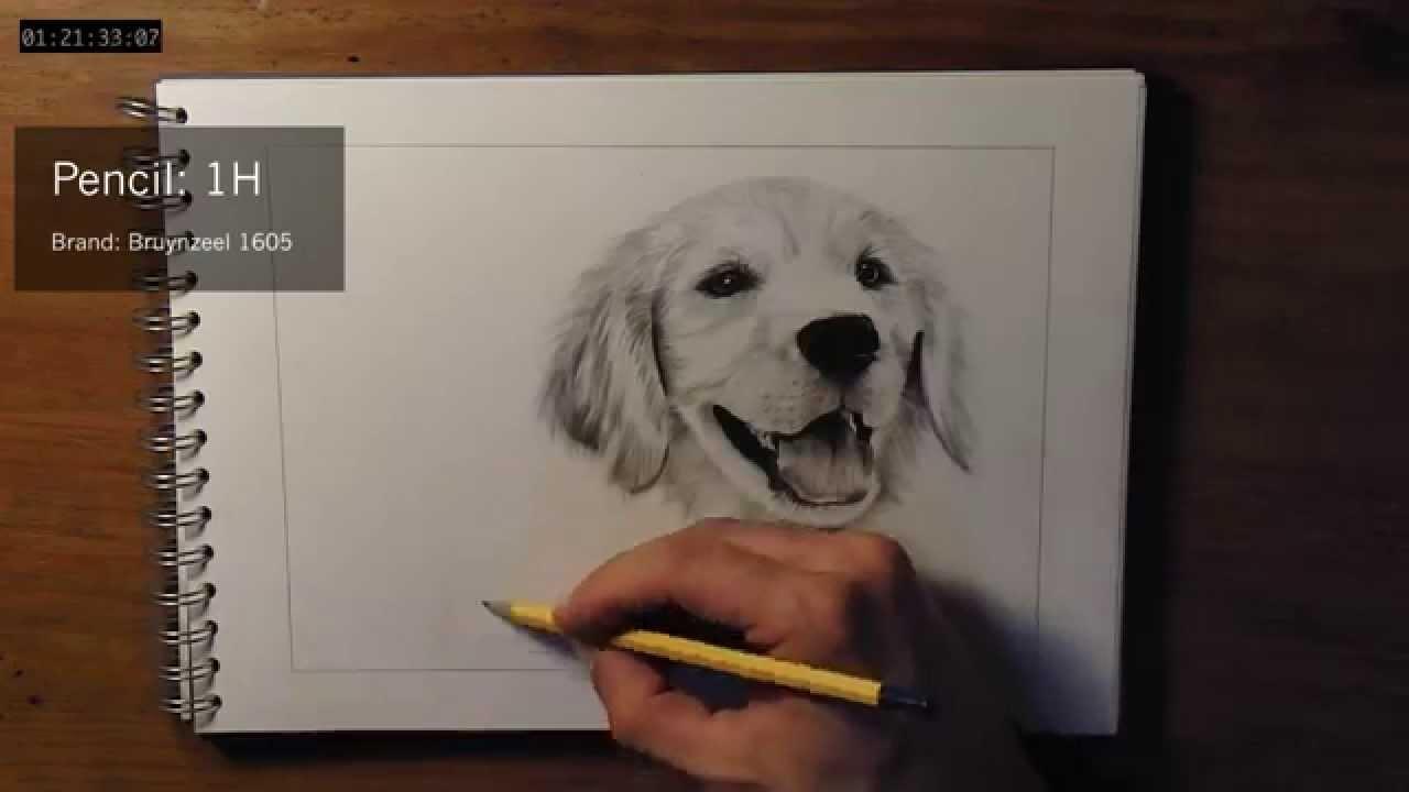 1280x720 How To Draw Dog Fur