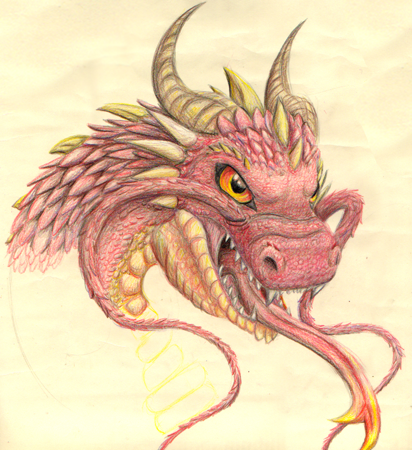 835x912 colored pencil dragon wip by invadertigerstar on deviantart