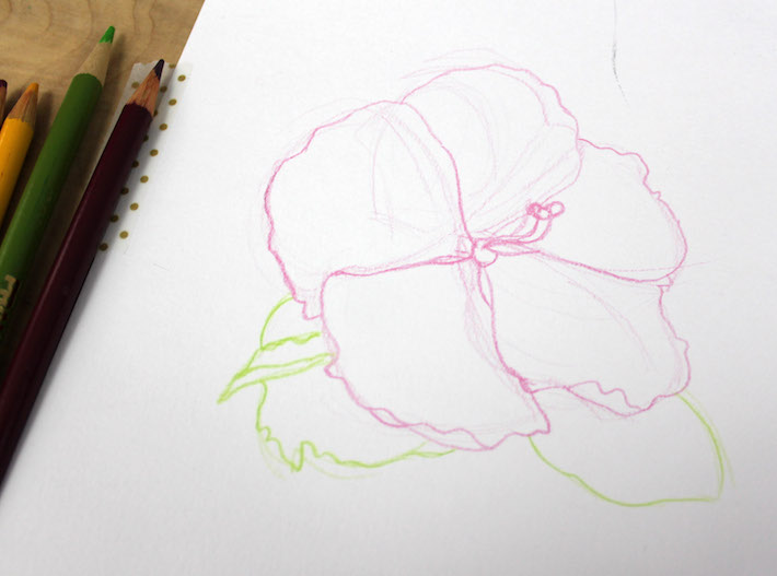 710x527 Drawing Flowers With Colored Pencils 5 Simple Steps
