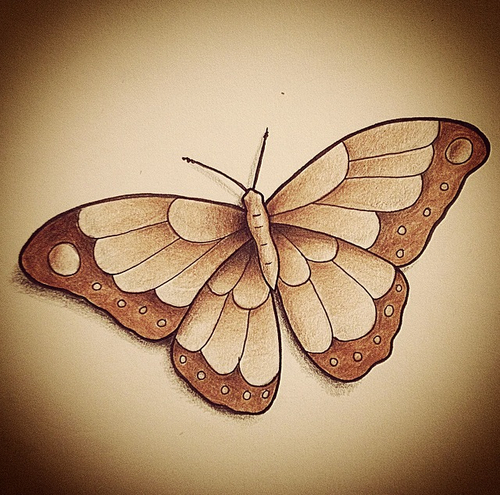 500x495 butterfly drawing uploaded by daisy on we heart it