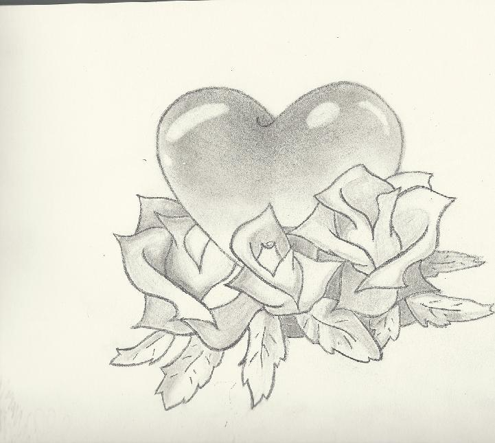 721x645 Pencil Drawings Of Hearts And Roses Collection (55+)