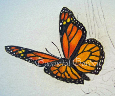 400x334 Drawn butterfly colour pencil