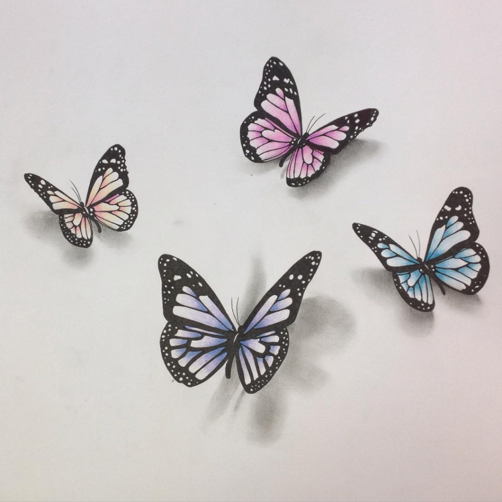 1024x1024 Realistic Butterflies Drawings Ideas Of A Realistic Drawing