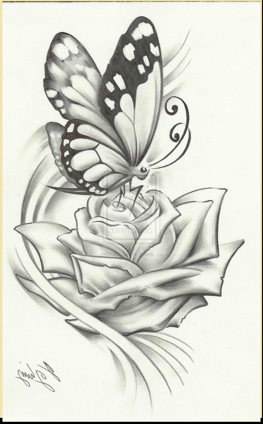 1071x1724 Pencil Sketch Drawing Of Butterfly Pencil Drawings Butterflies
