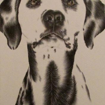 354x354 Shop Dog Drawings In Pencil On Wanelo