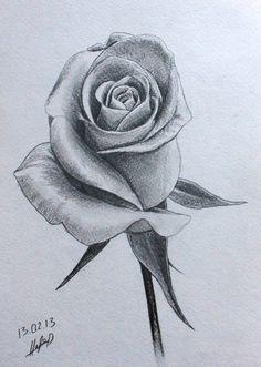 pencil drawing of rose at getdrawings free download