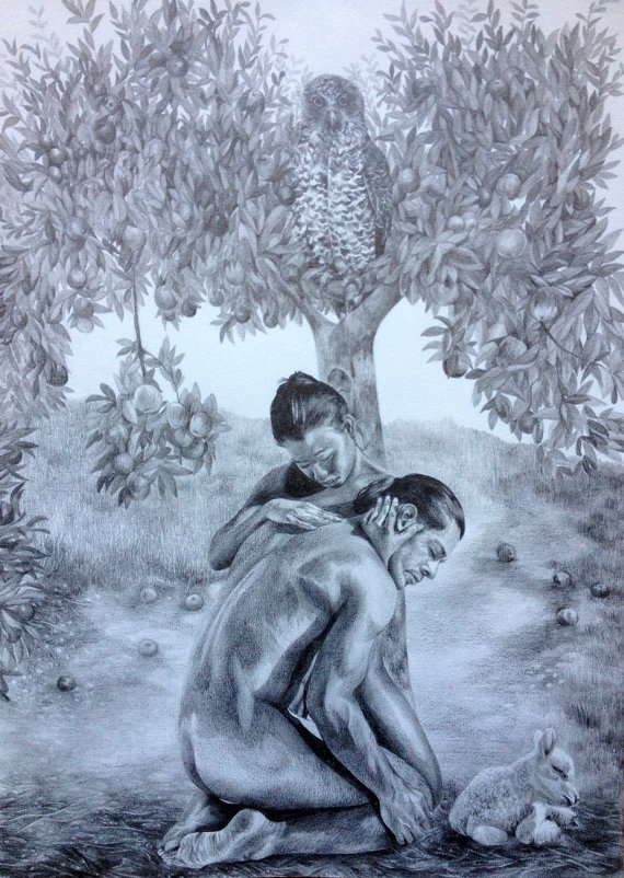 570x802 Original Pencil Drawing Adam And Eve Apple Tree Owl