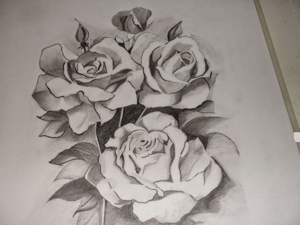 Pencil Drawing Pictures Of Flowers At Getdrawings Free For