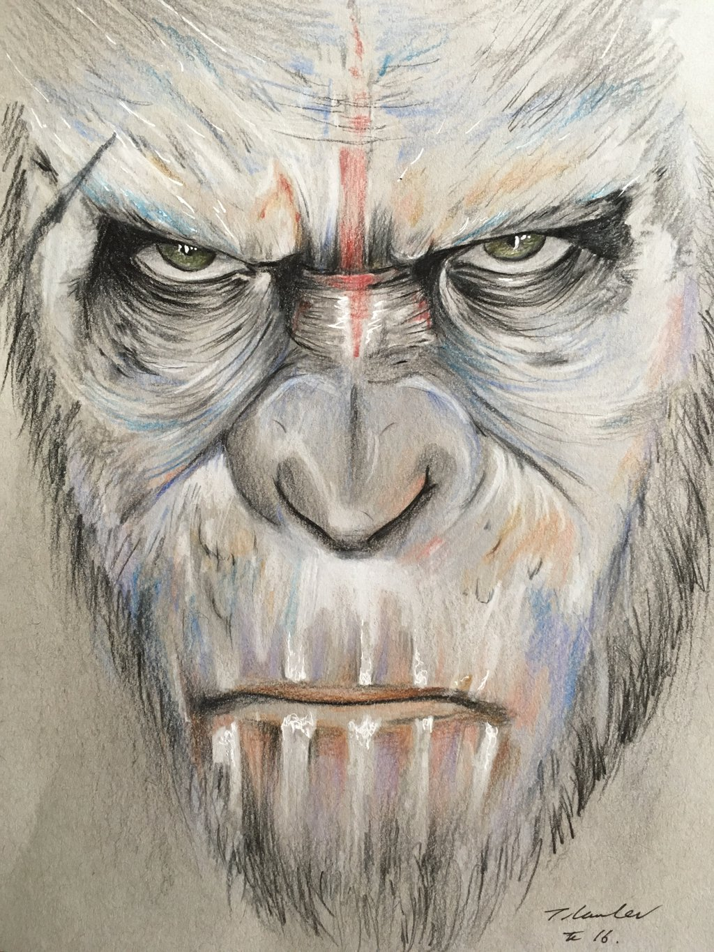 1024x1365 Caesar Planet Of The Apes Pencil Drawing By Billyboyuk Wallpaper