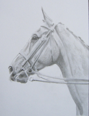 308x400 Pencil Sketches Of Animals Animal Hunter Horse Pencil Drawing