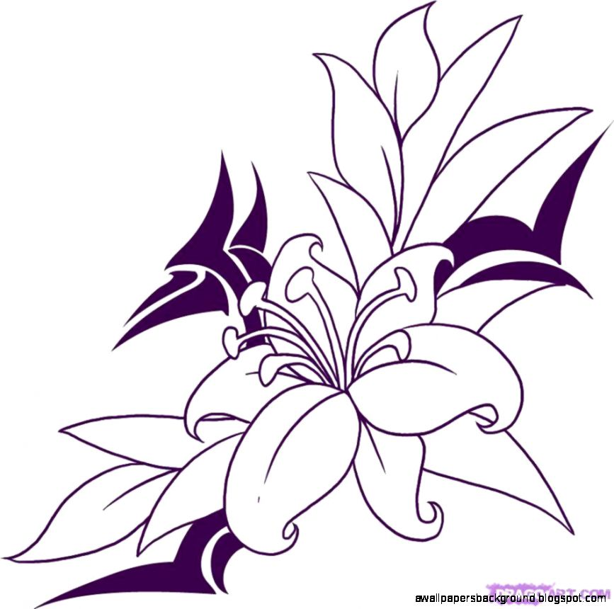 867x860 simple flower drawings in pencil wallpapers background
