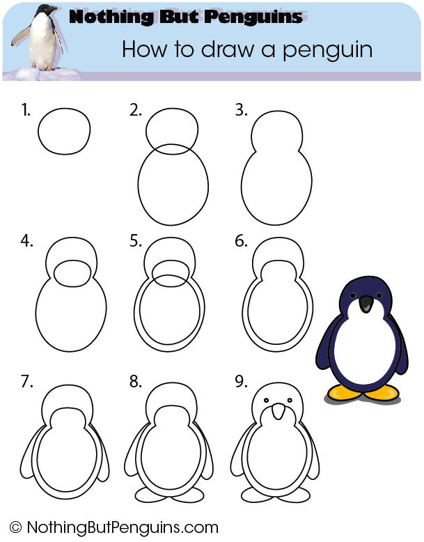 609x778 How To Draw A Penguin