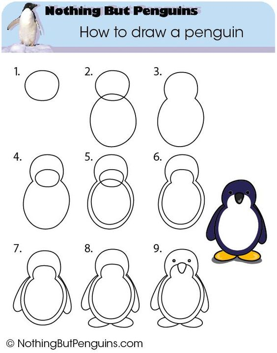 564x720 Drawing Of Igloo And Penguins