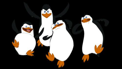 500x281 Penguins Of Madagascar Images The Penguins Of Madagascar Draw